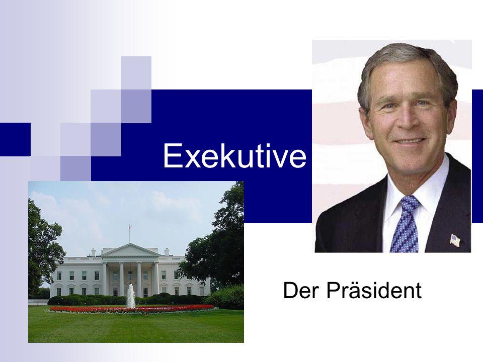 Exekutive Der Präsident