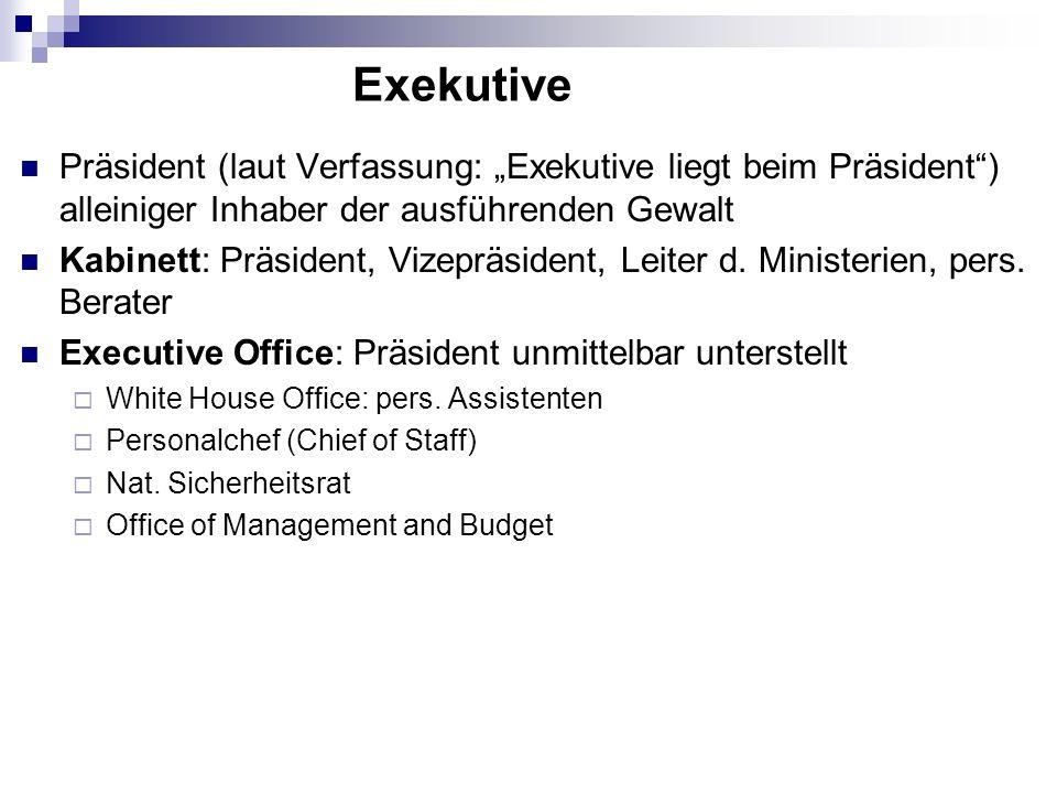 """Exekutive Präsident (laut Verfassung: """"Exekutive liegt beim Präsident ) alleiniger Inhaber der ausführenden Gewalt."""