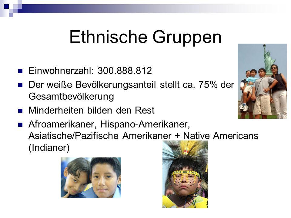 Ethnische Gruppen Einwohnerzahl: 300.888.812
