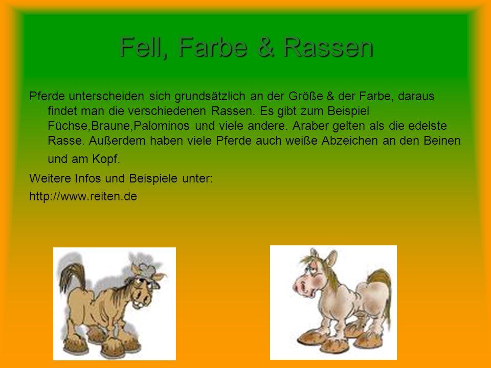 Fell, Farbe & Rassen