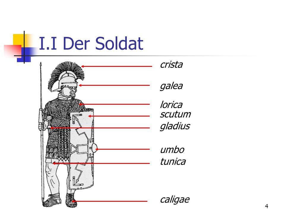 I.I Der Soldat crista galea lorica scutum gladius umbo tunica caligae