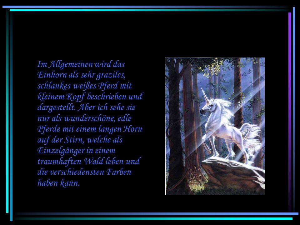 Im Allgemeinen wird das Einhorn als sehr graziles, schlankes weißes Pferd mit kleinem Kopf beschrieben und dargestellt.