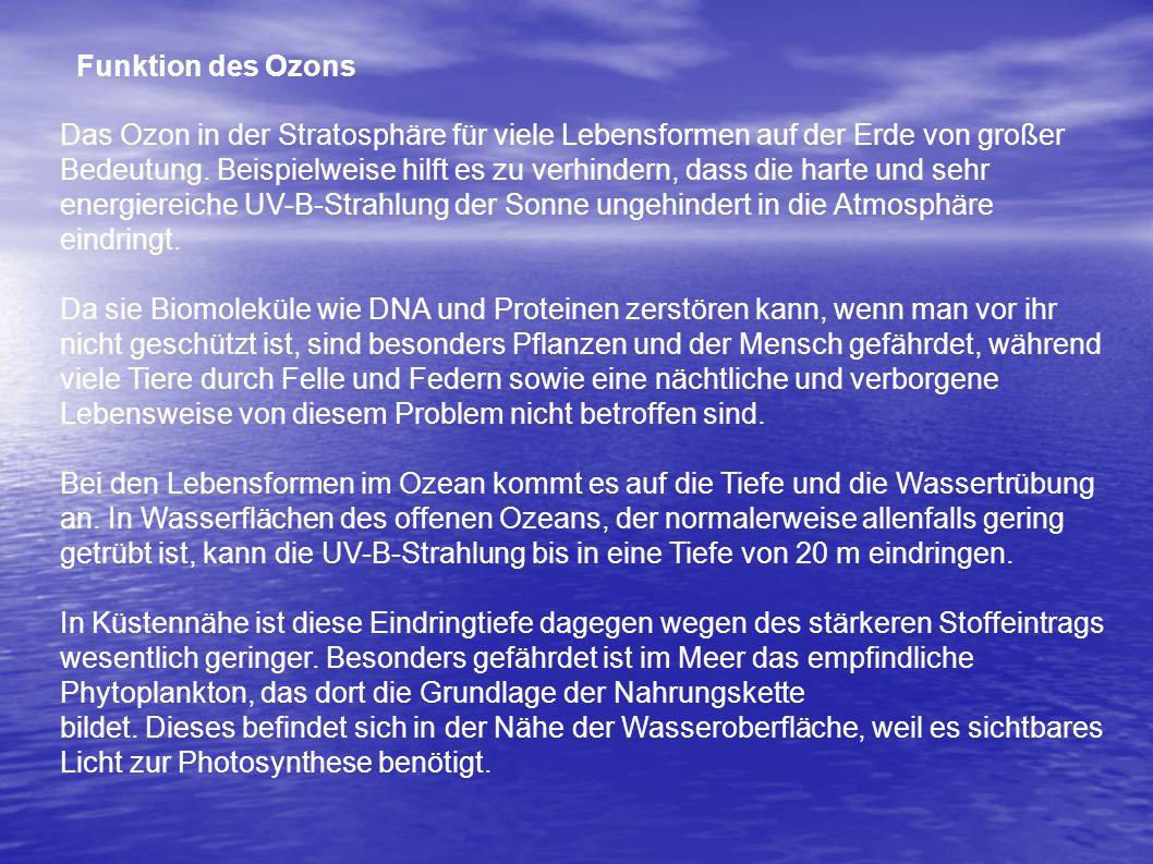Funktion des Ozons