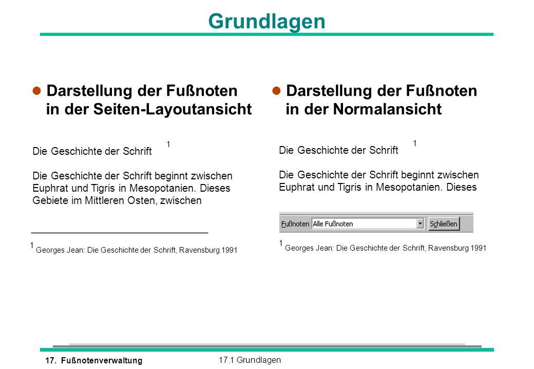 Grundlagen Darstellung der Fußnoten in der Seiten-Layoutansicht