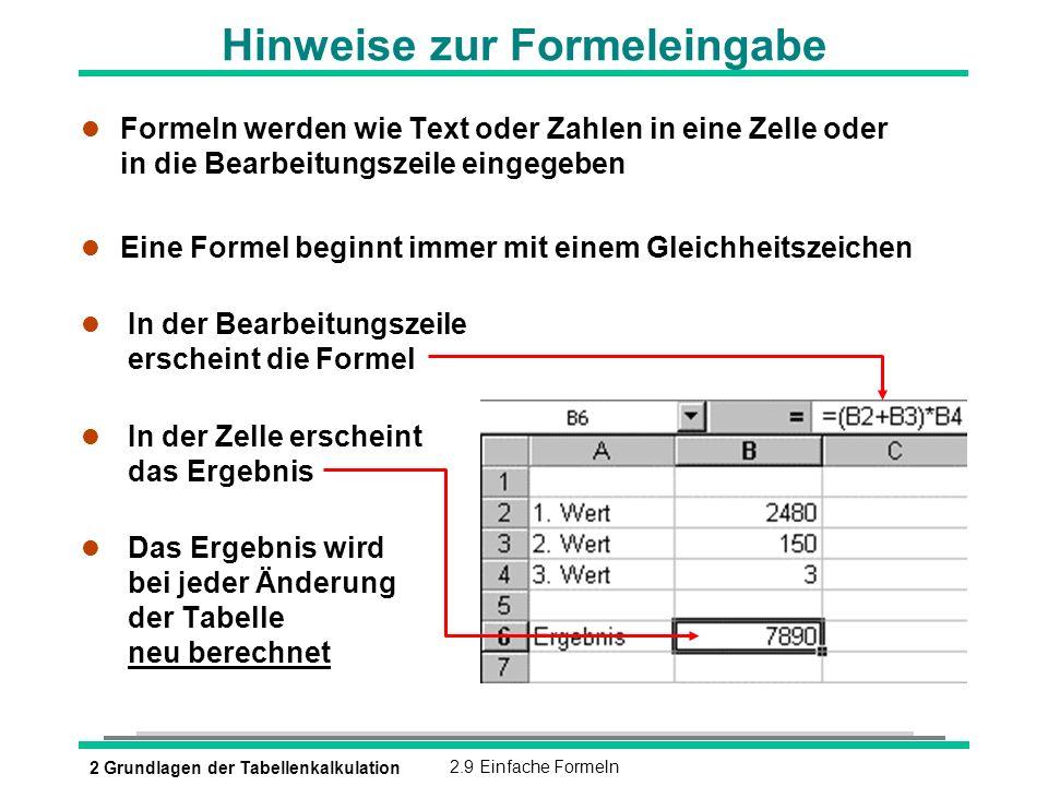 Hinweise zur Formeleingabe