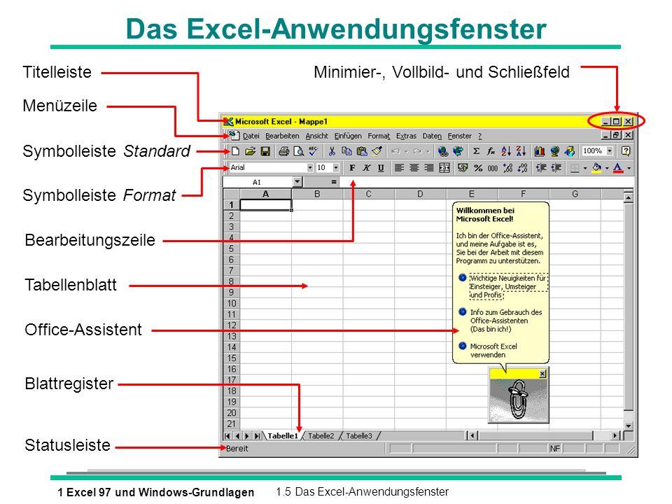 Das Excel-Anwendungsfenster