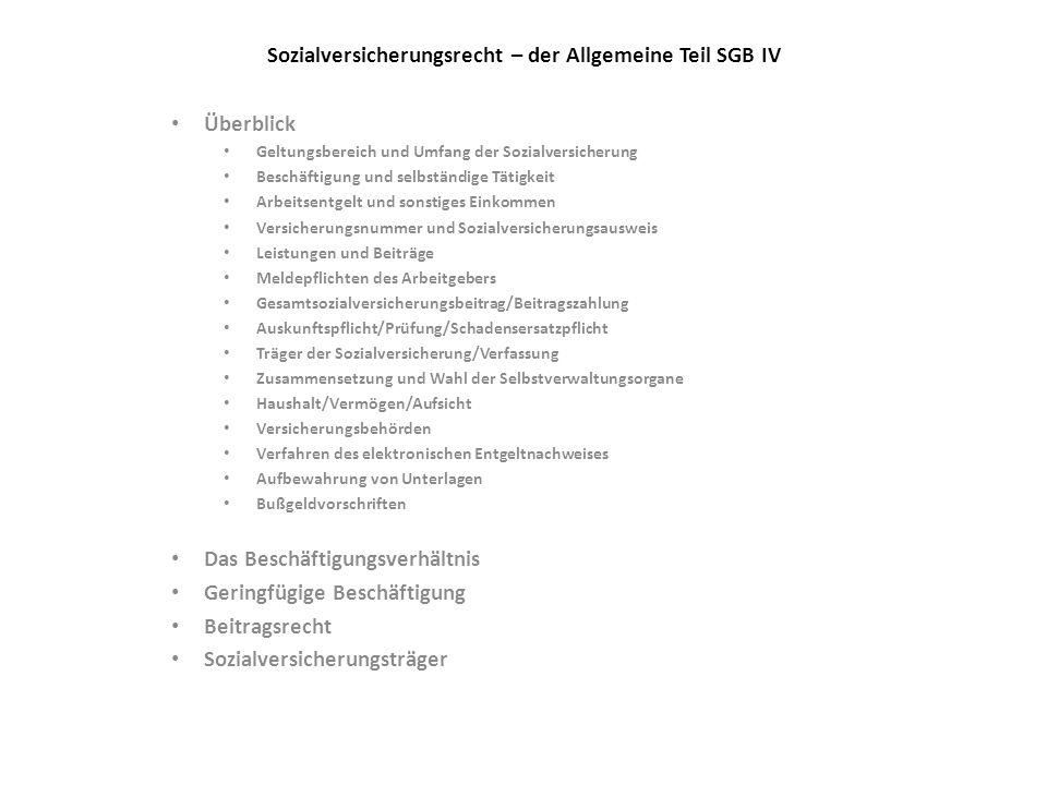Sozialversicherungsrecht – der Allgemeine Teil SGB IV