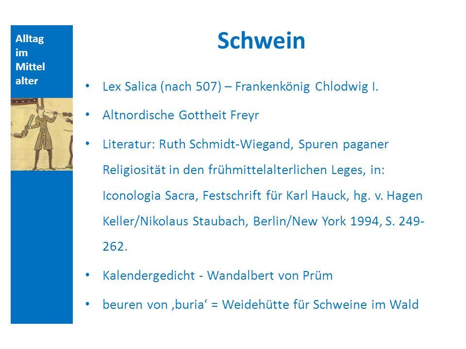 Schwein Lex Salica (nach 507) – Frankenkönig Chlodwig I.