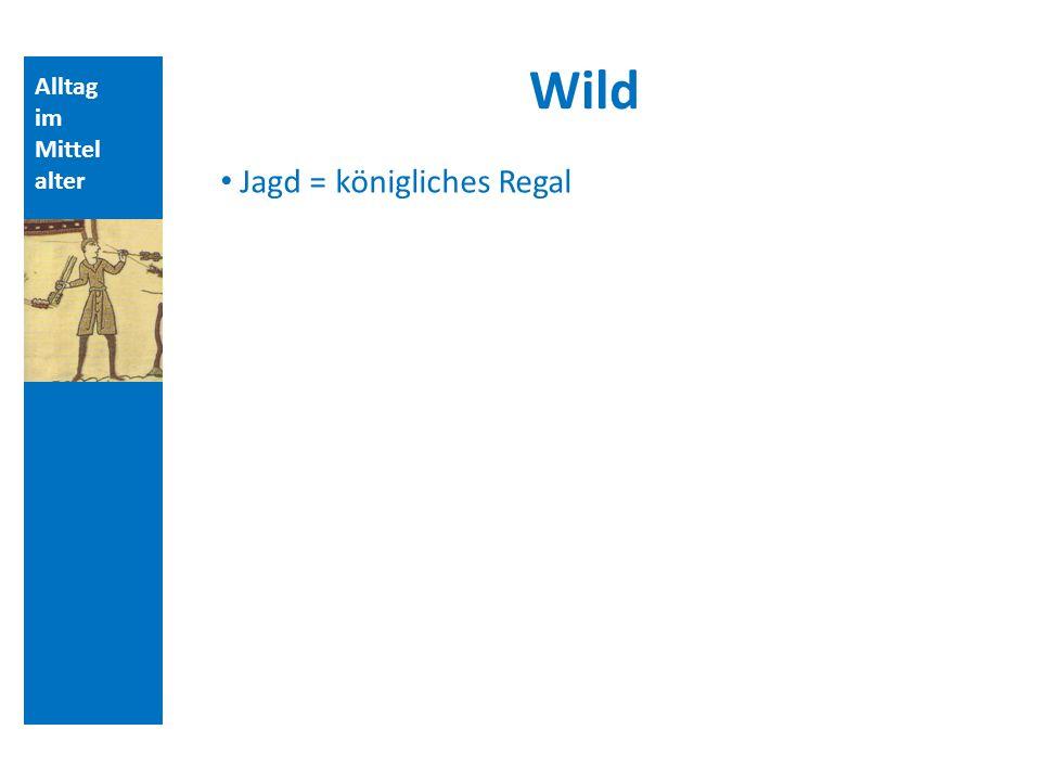 Wild Jagd = königliches Regal Alltag im Mittelalter