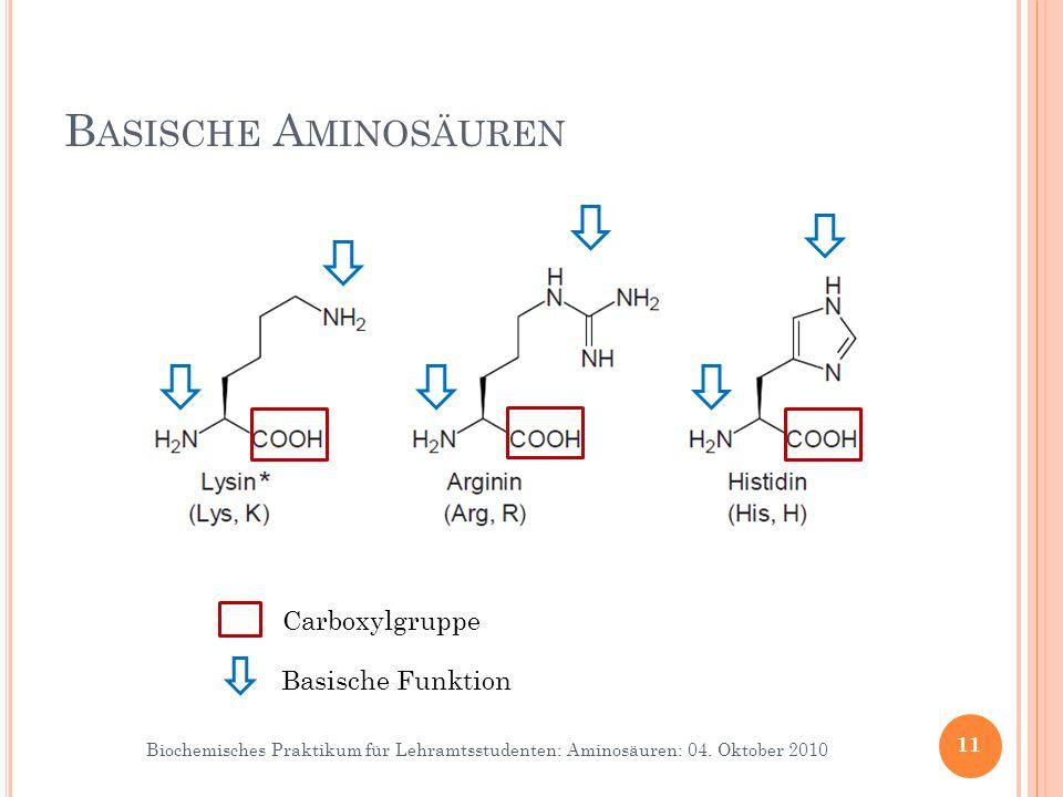 Basische Aminosäuren Die Seitenketten basischer AS sind bei physiologischem pH meist positiv geladen.