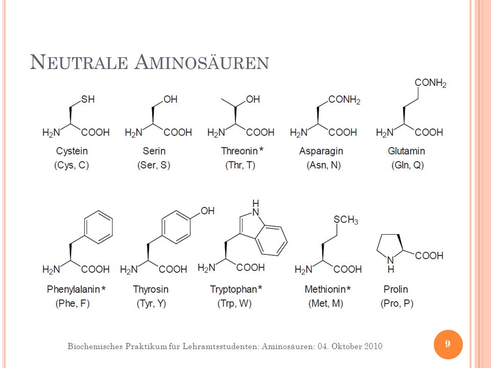 Neutrale Aminosäuren