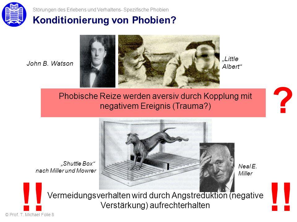 Konditionierung von Phobien