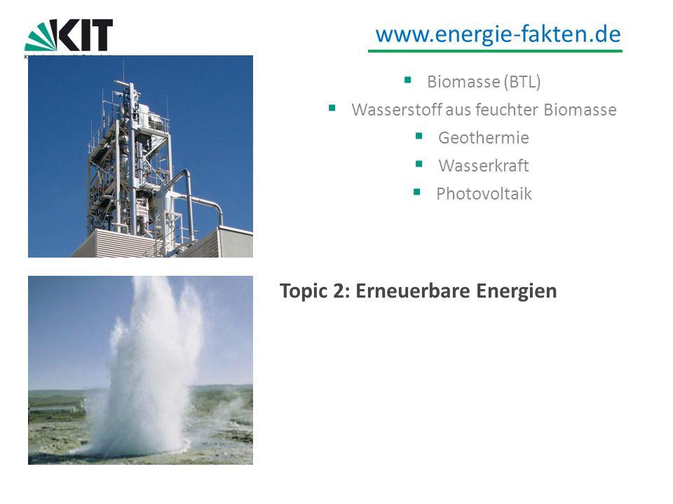 Wasserstoff aus feuchter Biomasse