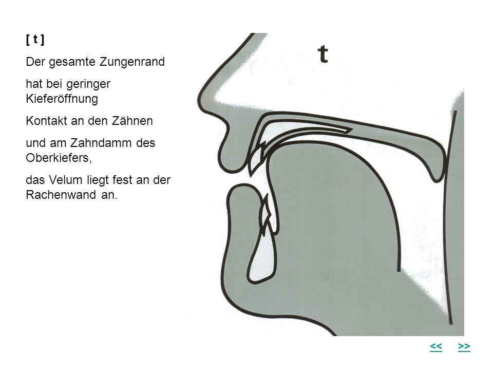Der gesamte Zungenrand hat bei geringer Kieferöffnung