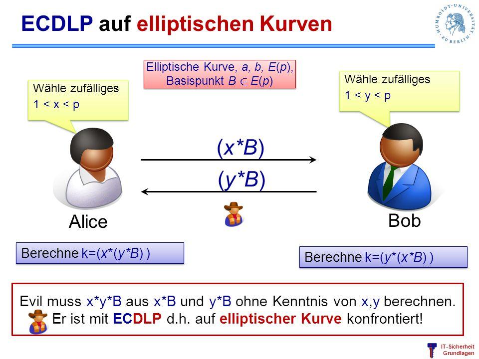 ECDLP auf elliptischen Kurven