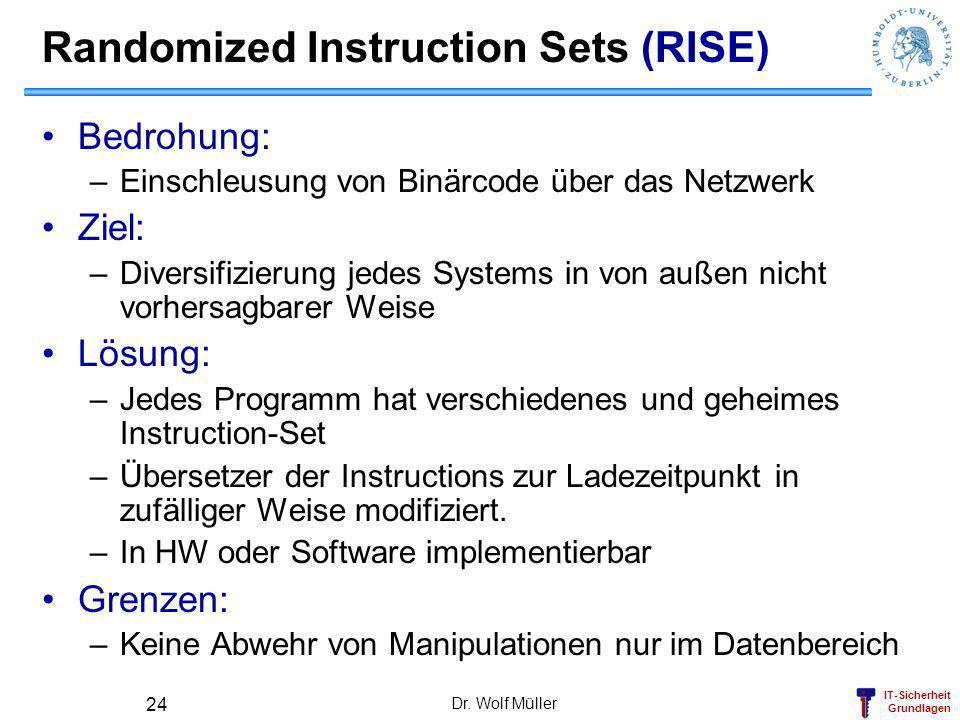 Randomized Instruction Sets (RISE)