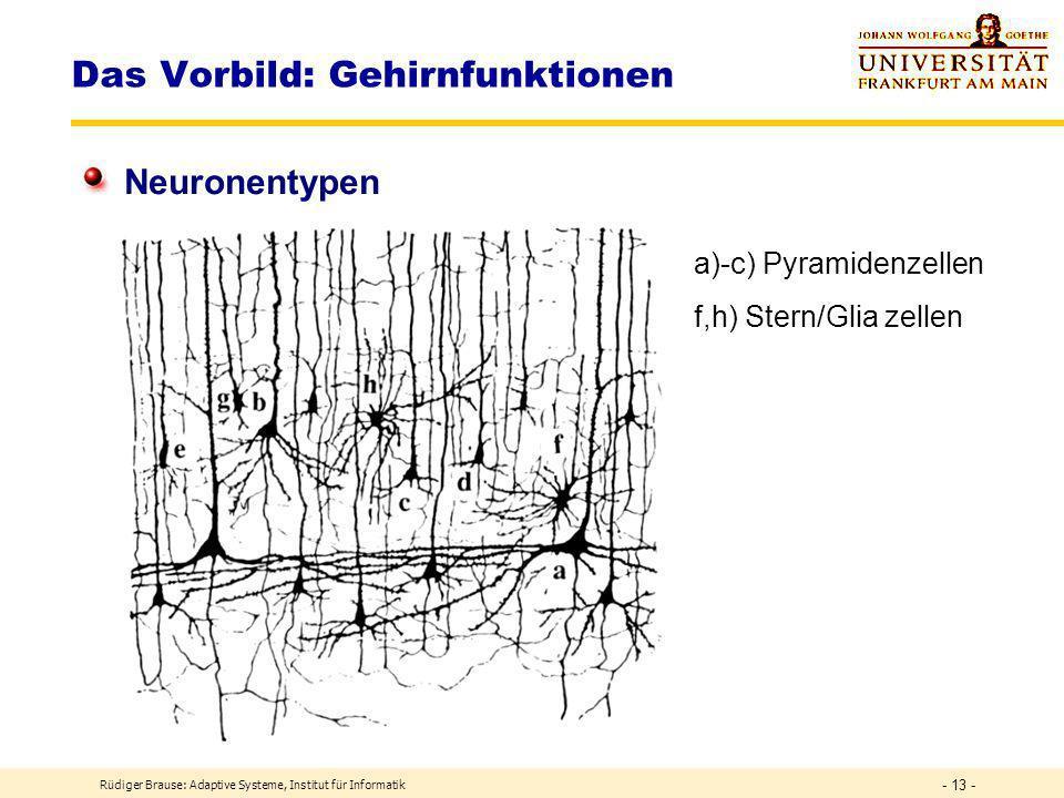 Das Vorbild: Gehirnfunktionen