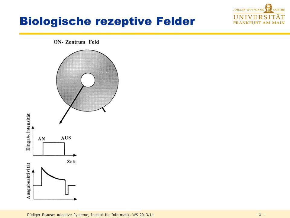 Biologische rezeptive Felder