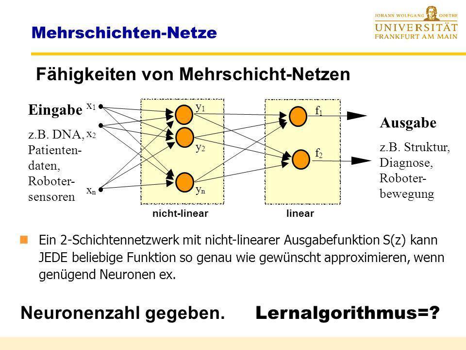 Fähigkeiten von Mehrschicht-Netzen