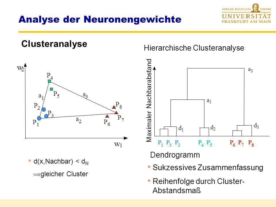 Analyse der Neuronengewichte