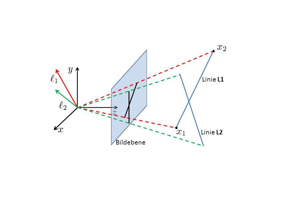 Linie L1 Linie L2 Bildebene