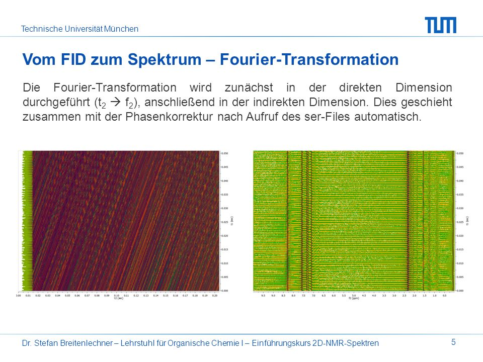 Vom FID zum Spektrum – Fourier-Transformation