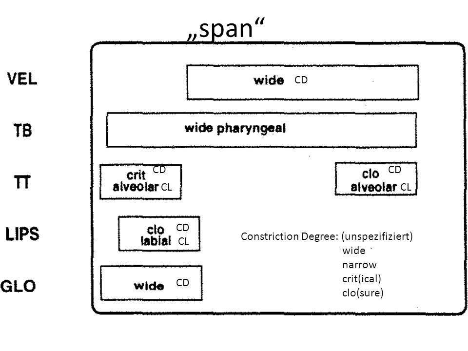 """span CD CD CD CL CL CD Constriction Degree: (unspezifiziert) wide"