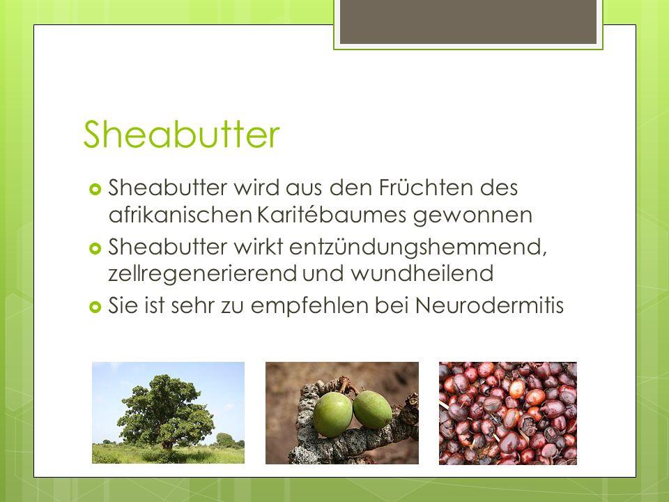 Sheabutter Sheabutter wird aus den Früchten des afrikanischen Karitébaumes gewonnen.