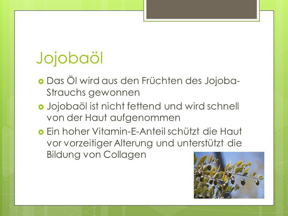 Jojobaöl Das Öl wird aus den Früchten des Jojoba-Strauchs gewonnen