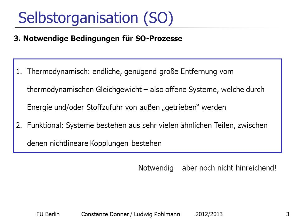 Selbstorganisation (SO)