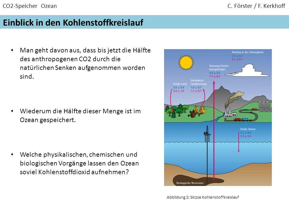 CO2-Speicher Ozean C. Förster / F. Kerkhoff