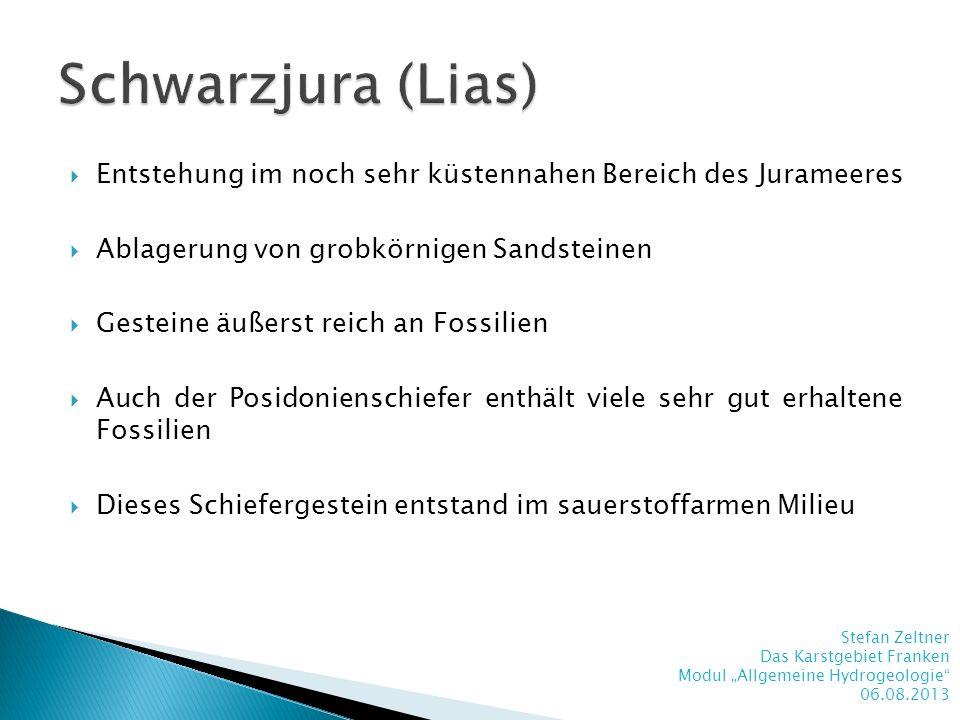 Schwarzjura (Lias)Entstehung im noch sehr küstennahen Bereich des Jurameeres. Ablagerung von grobkörnigen Sandsteinen.