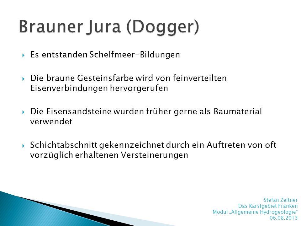 Brauner Jura (Dogger) Es entstanden Schelfmeer-Bildungen