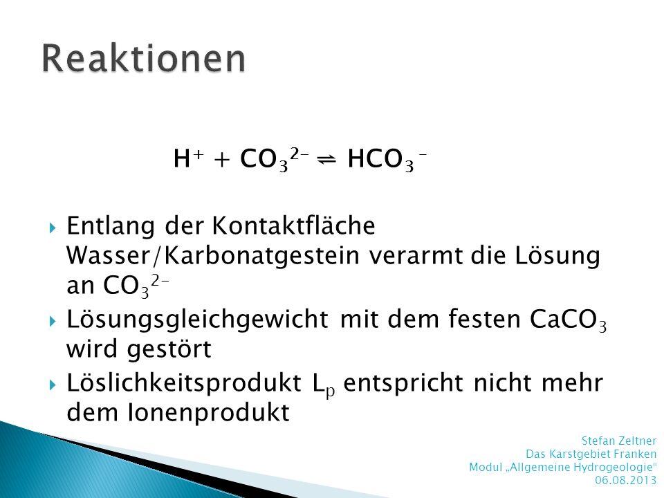 Reaktionen H+ + CO32- ⇌ HCO3 –