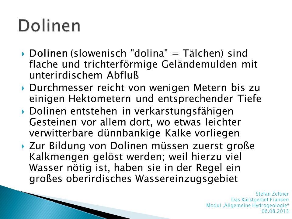 Dolinen Dolinen (slowenisch dolina = Tälchen) sind flache und trichterförmige Geländemulden mit unterirdischem Abfluß.