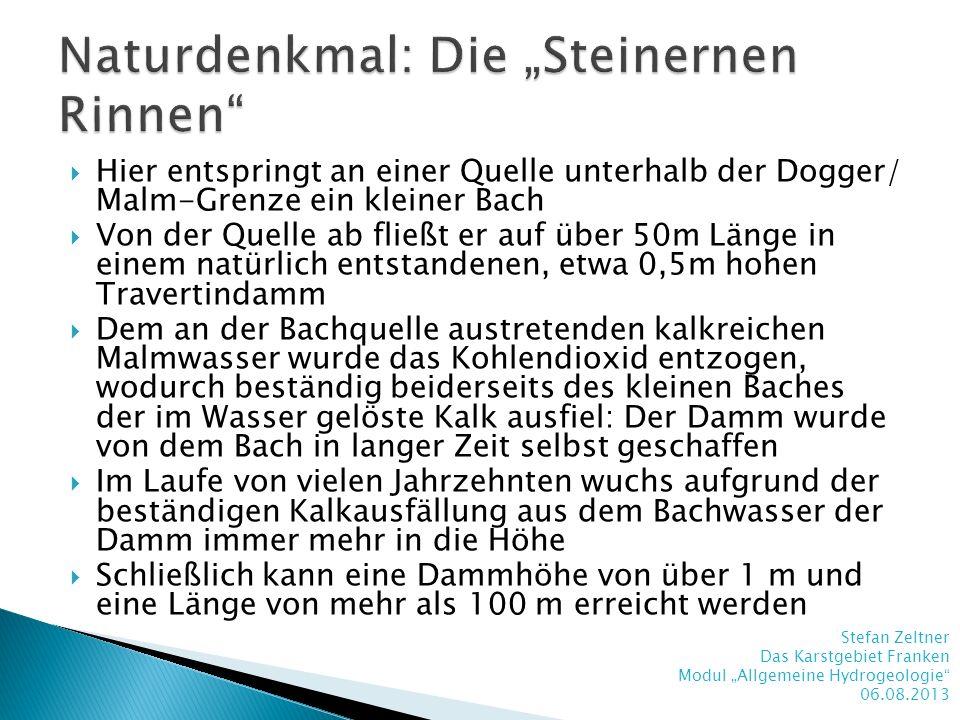 """Naturdenkmal: Die """"Steinernen Rinnen"""