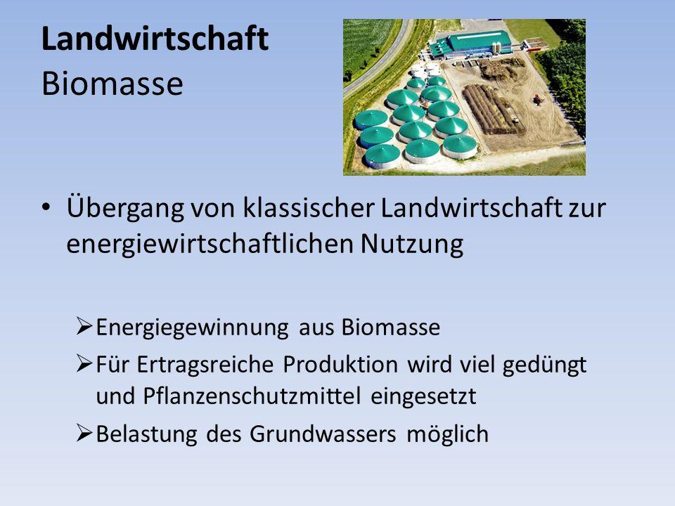 Landwirtschaft Biomasse