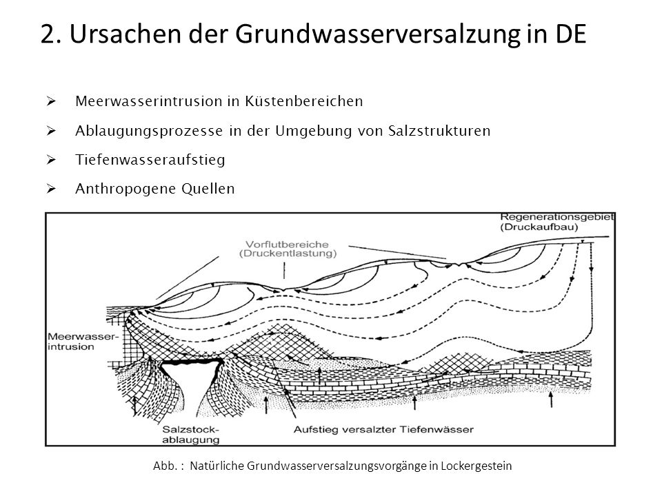 Abb. : Natürliche Grundwasserversalzungsvorgänge in Lockergestein