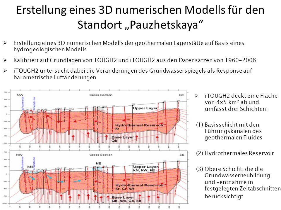 """Erstellung eines 3D numerischen Modells für den Standort """"Pauzhetskaya"""