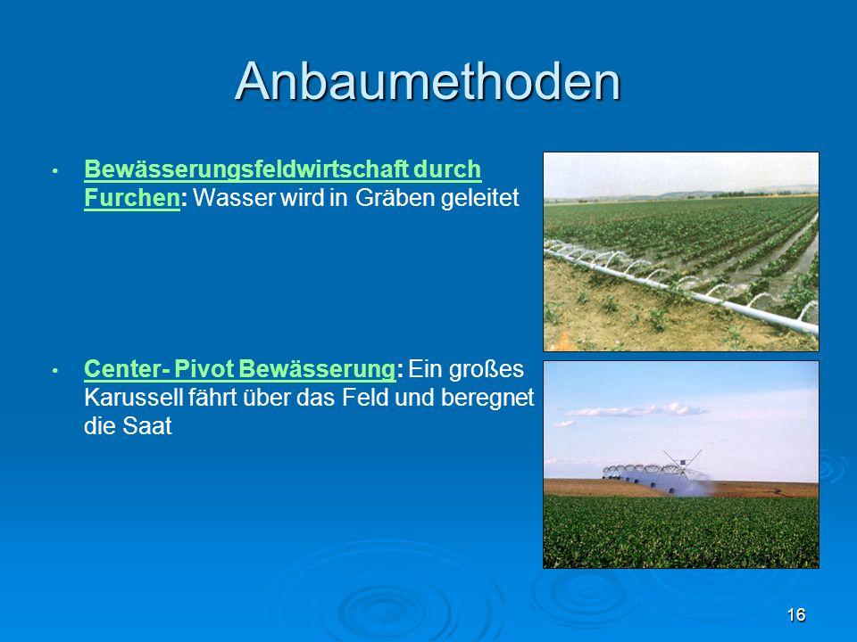 Anbaumethoden Bewässerungsfeldwirtschaft durch Furchen: Wasser wird in Gräben geleitet.
