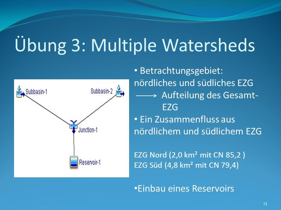 Übung 3: Multiple Watersheds