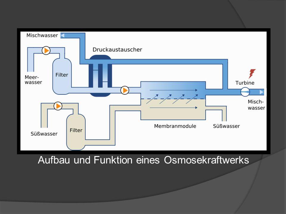 Aufbau und Funktion eines Osmosekraftwerks