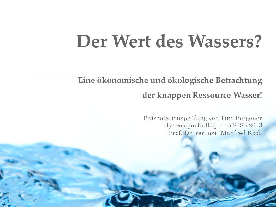 Der Wert des Wassers Eine ökonomische und ökologische Betrachtung