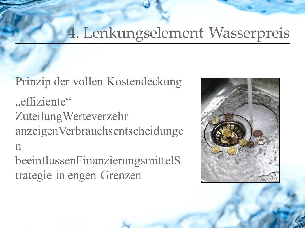 4. Lenkungselement Wasserpreis