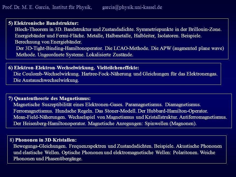 Prof. Dr. M. E. Garcia, Institut für Physik, garcia@physik. uni-kassel