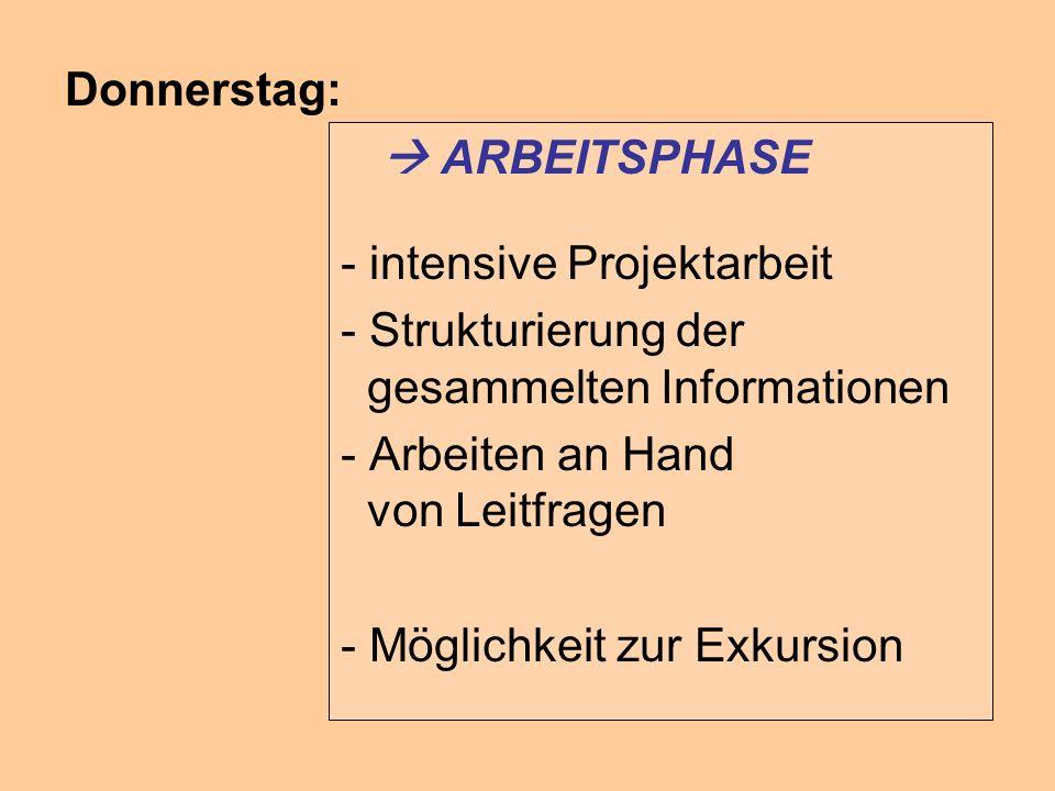 Donnerstag:  ARBEITSPHASE. - intensive Projektarbeit. - Strukturierung der gesammelten Informationen.