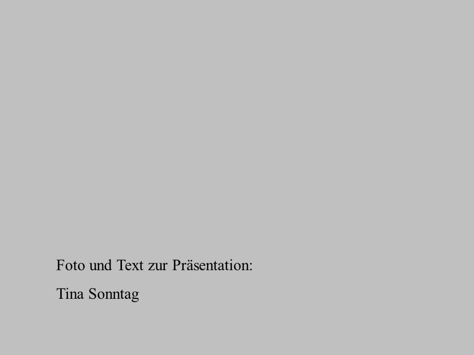 Foto und Text zur Präsentation:
