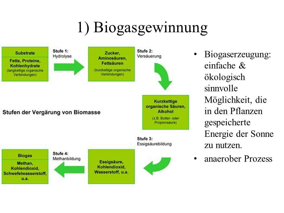 1) Biogasgewinnung Biogaserzeugung: einfache & ökologisch sinnvolle Möglichkeit, die in den Pflanzen gespeicherte Energie der Sonne zu nutzen.