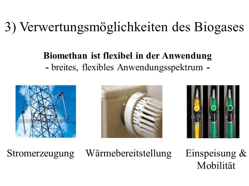 3) Verwertungsmöglichkeiten des Biogases