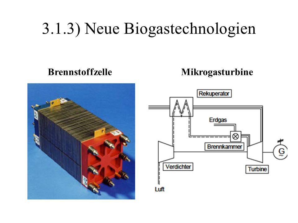 3.1.3) Neue Biogastechnologien